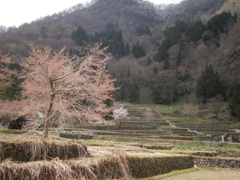 富山県旅行は五箇山の相倉合掌造り集落と上梨周辺が【絶対 ...