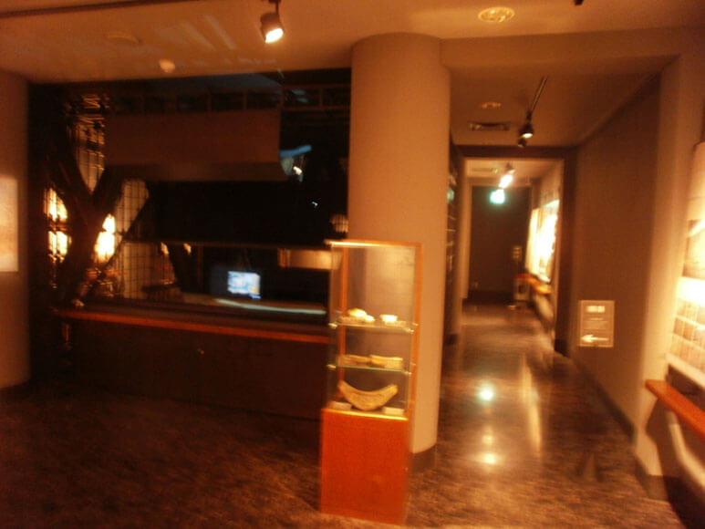 富山県旅行観光富山市郷土博物館