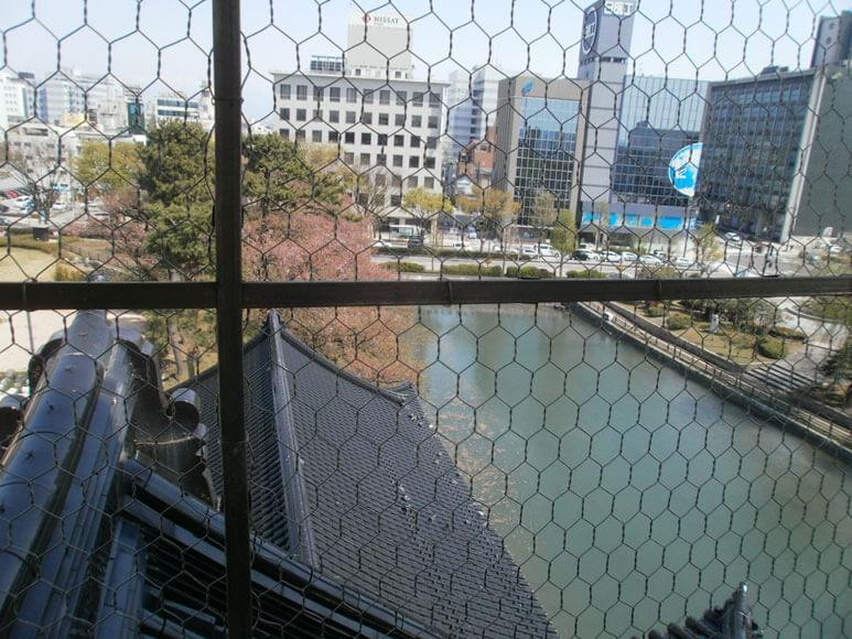 富山県旅行観光富山市郷土博物館展望台