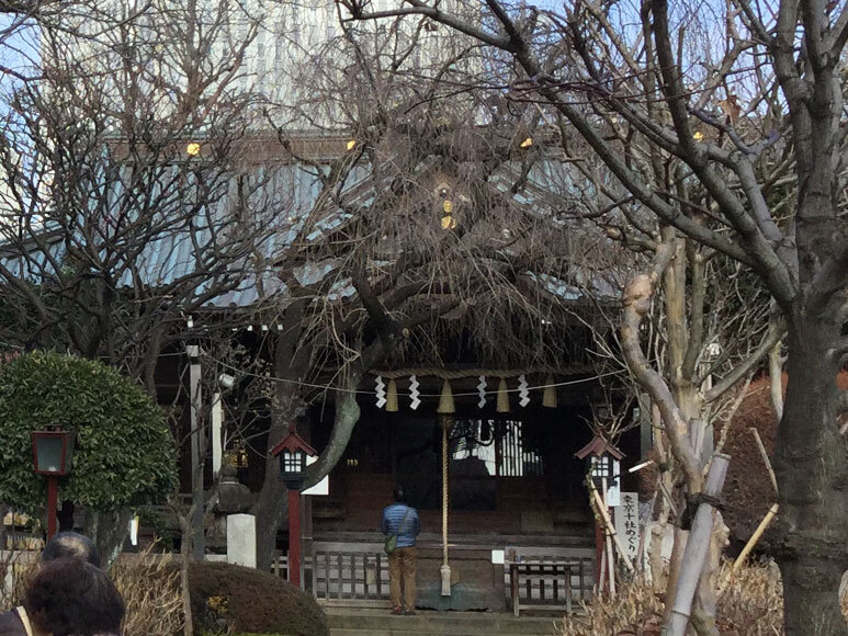 東京都旅行観光東京十社巡り白山神社