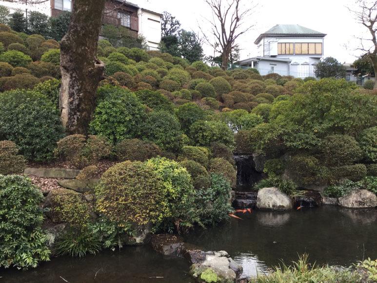 東京都旅行観光東京十社巡り根津神社