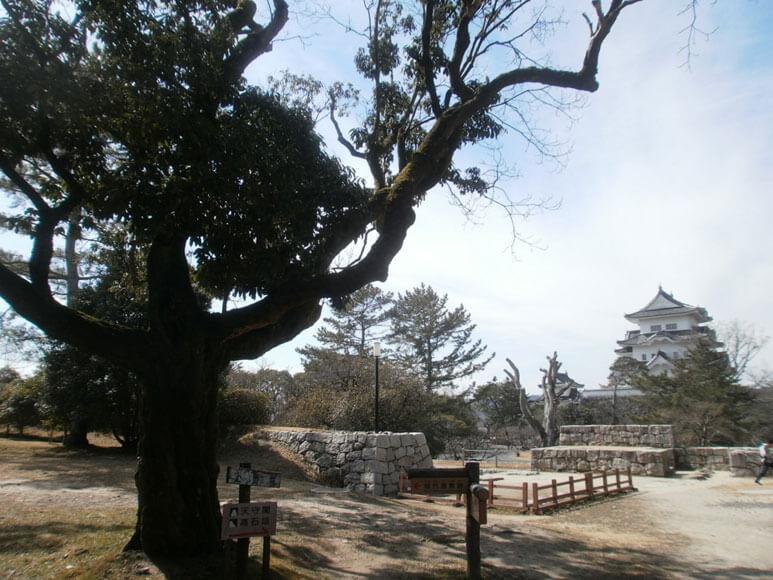 三重県旅行観光伊賀市