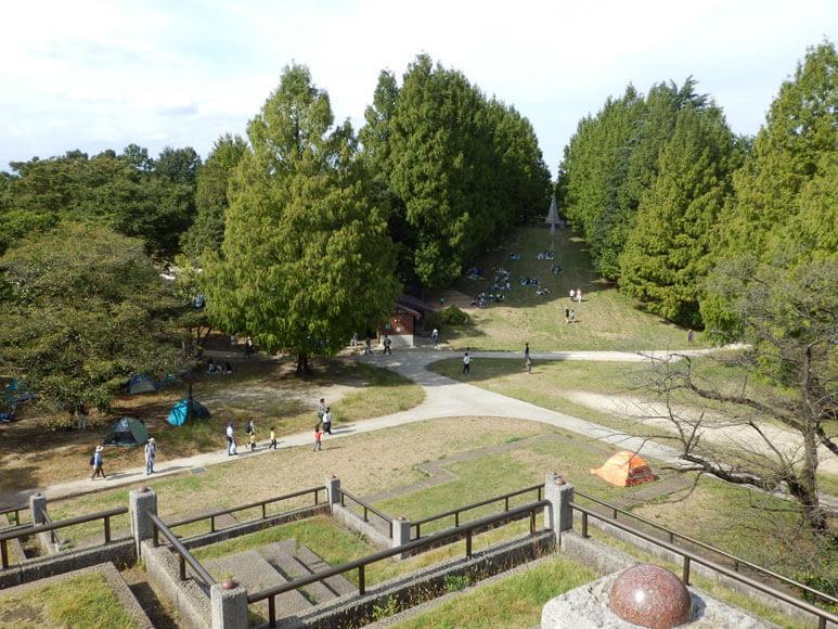 国営昭和記念公園こどもの森