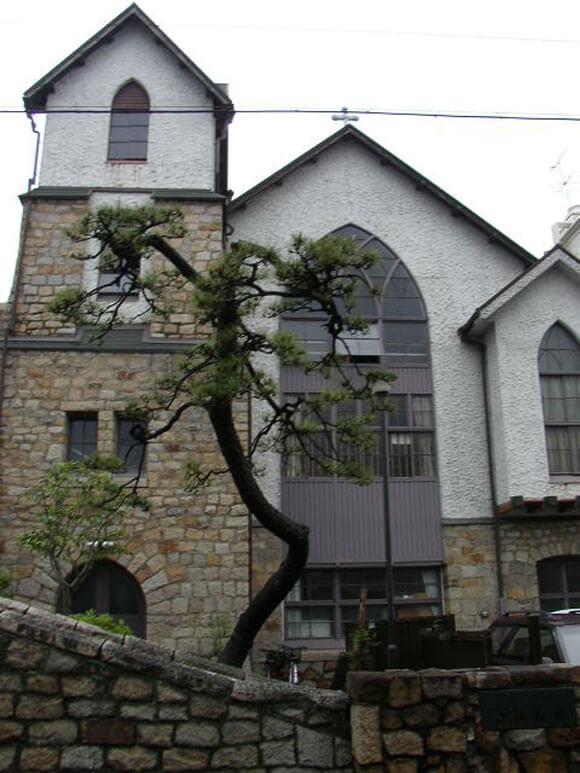 岡山県旅行観美観地区