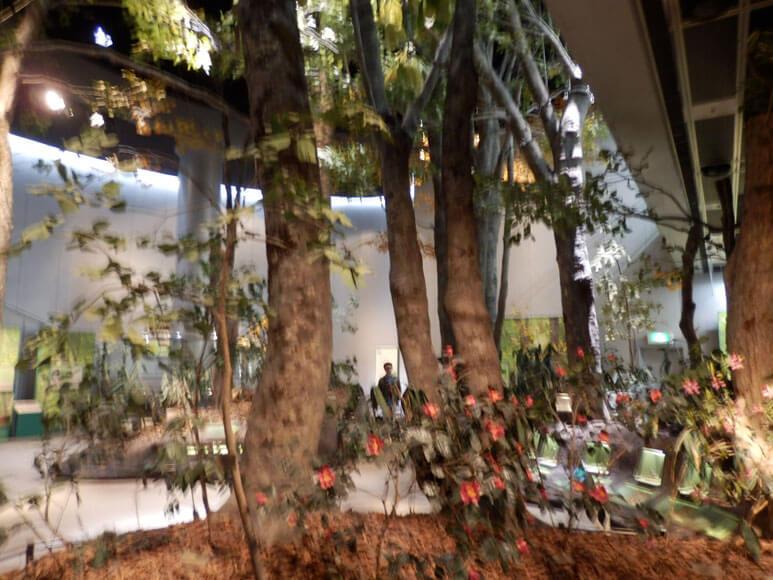 新潟県旅行観光新潟県立自然科学館