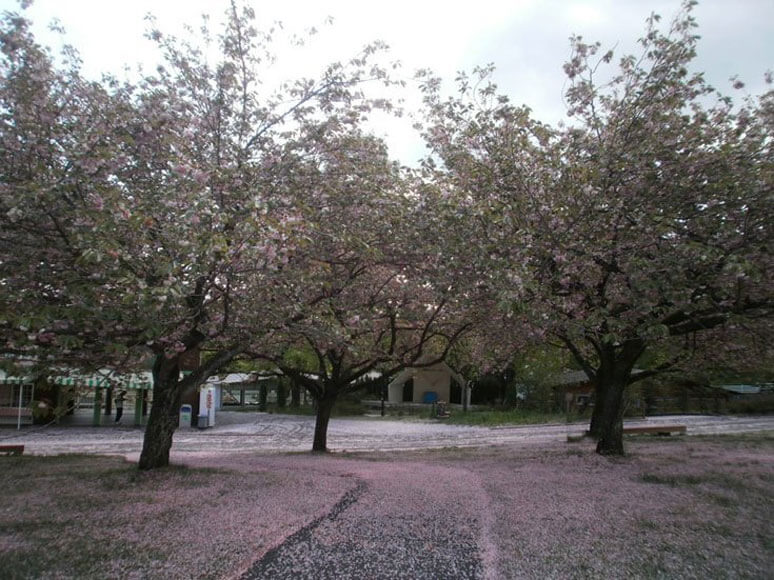 群馬県旅行観光伊香保グリーン牧場